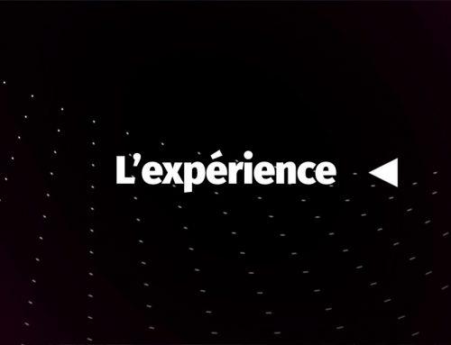 Previgesst – L'Expérience Action. Réaction.